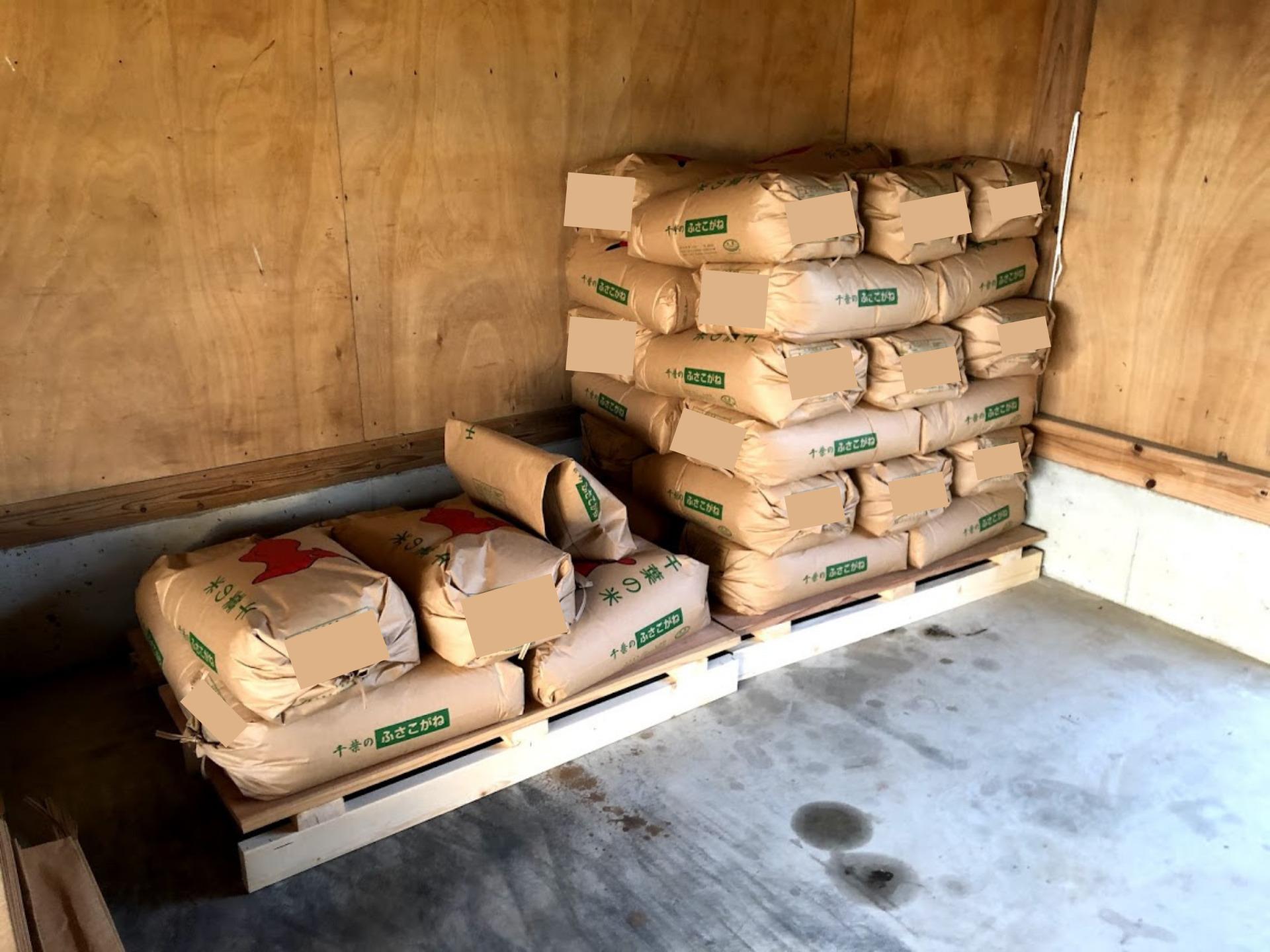 収穫され袋詰めされた稲