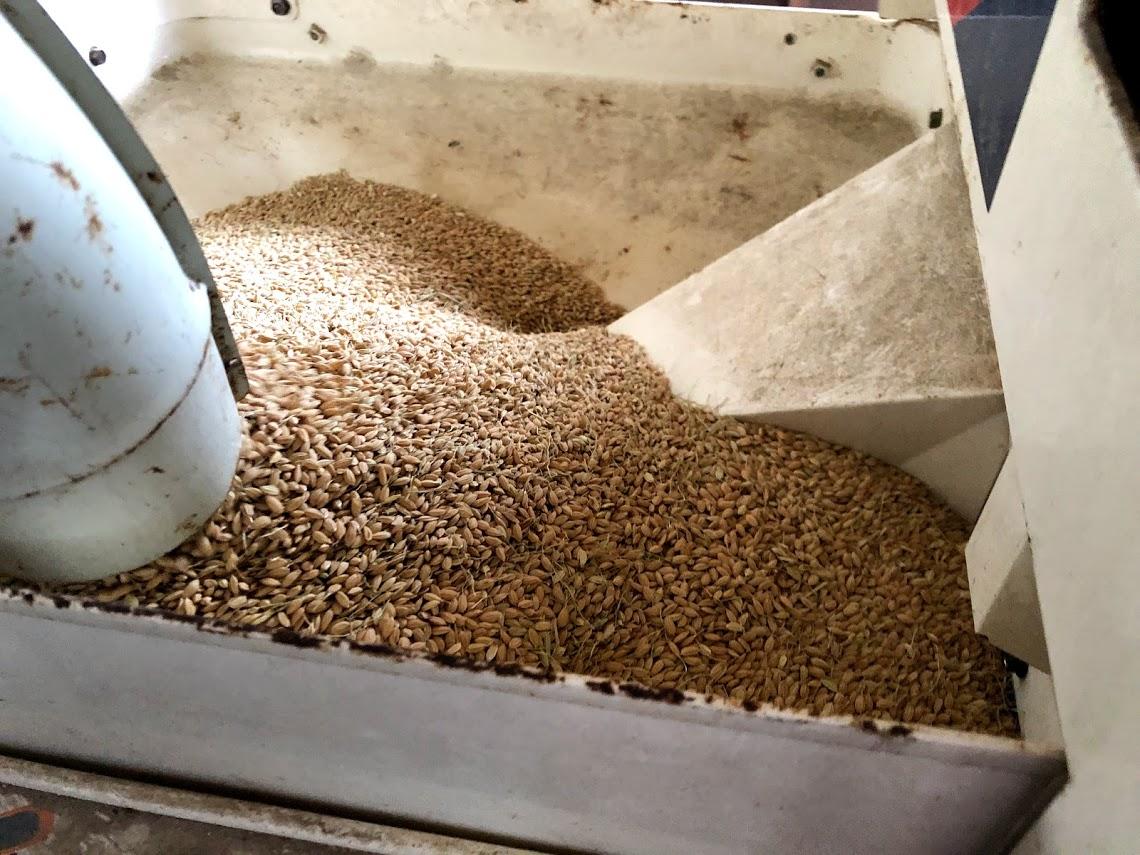 籾摺り前のお米の様子